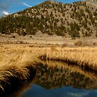 Rocky Mountain Reflection by punchdrunklove