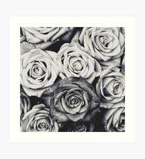Lámina artística Rosas