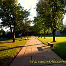 University of Pittsburgh walk of fame by PJS15204