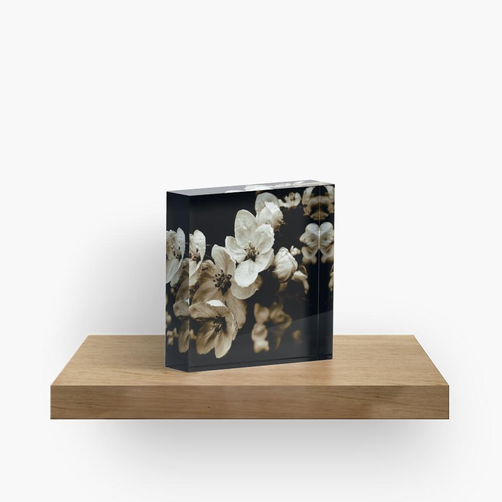 Apple Blossom Acrylic Block