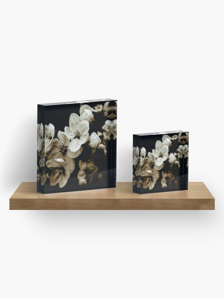Alternate view of Apple Blossom Acrylic Block
