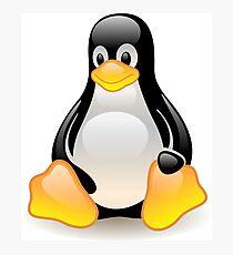 Tux Linux manchot  Photographic Print