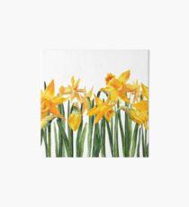 watercolor yellow narcissus  Art Board