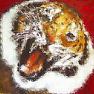 Tiger by Gunter Wenzel