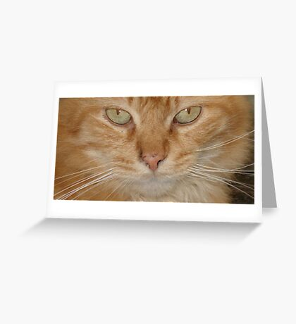 Vern Greeting Card