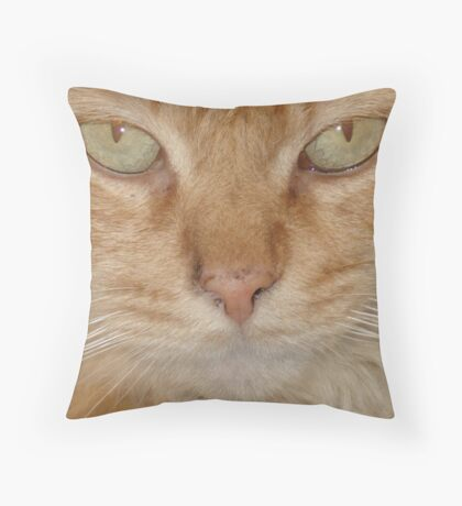 Vern Throw Pillow