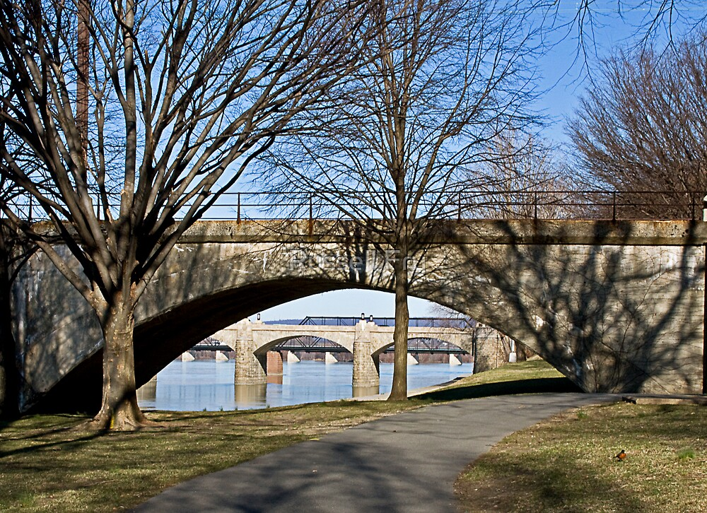 Morning View of Bridges in Spring by Russell Fry