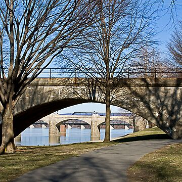 Morning View of Bridges in Spring by cvdad