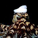 The Mimic Artist by seamonkey