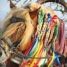 Лошадь на Масленице в Москве by M-EK