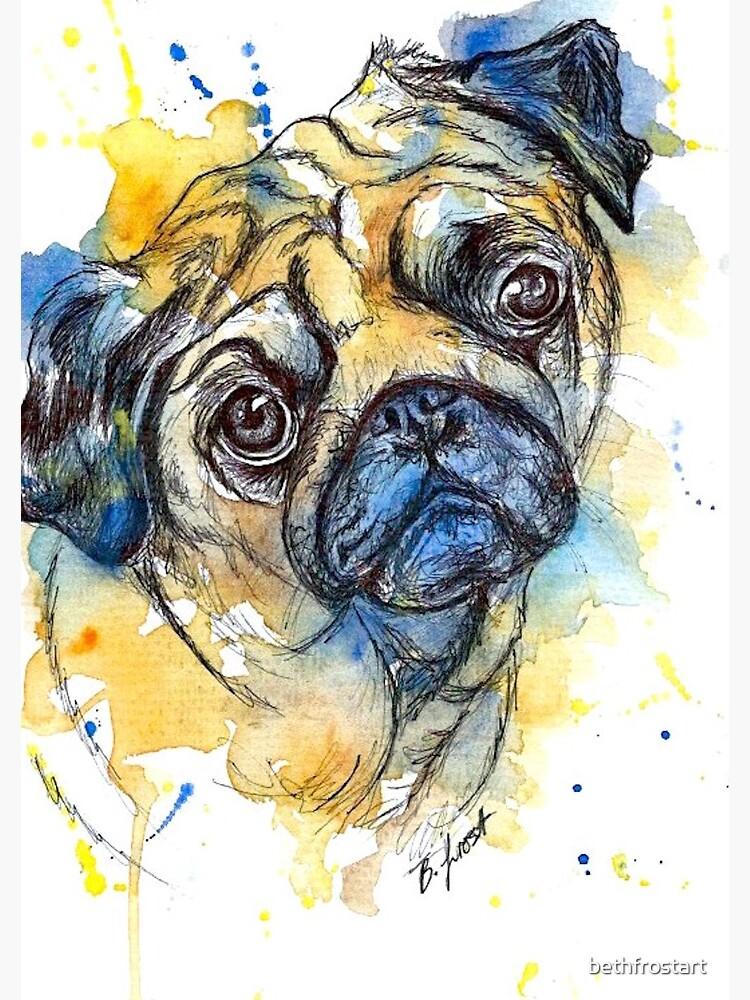 Colourful Pug by bethfrostart