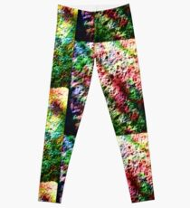 Rainbow Crunch Leggings