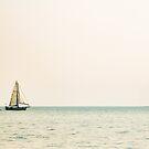 Sailboat and Boon by Judi FitzPatrick