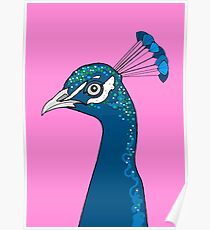 Peacock Portrait ( pink ) Poster