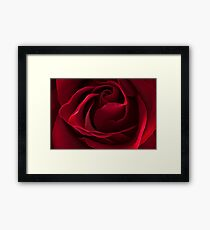 Dark Red Rose Framed Print