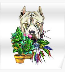 Pit bull dog print with flowers Poster