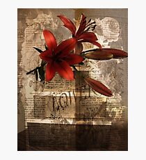 The Language of Flowers  Photographic Print
