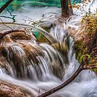 The Flowing Water by Susan Dost