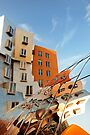 The Ray and Maria Stata Center by Alex Preiss