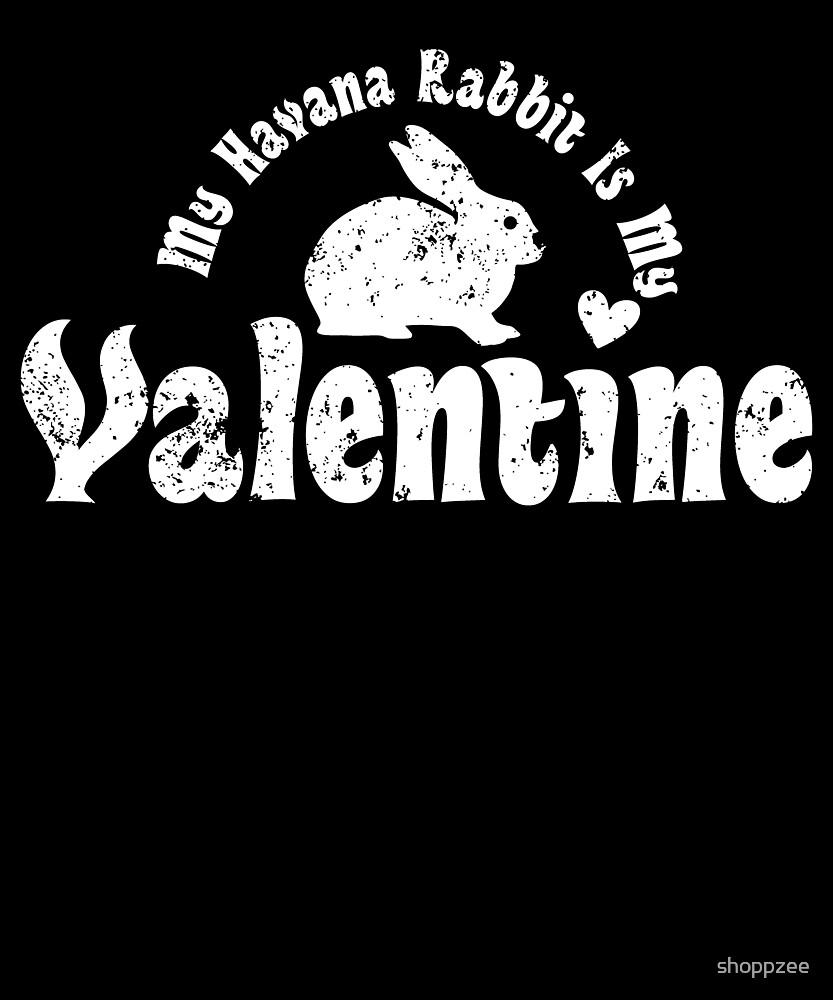 My Anti Valentine Pet Havana Rabbit by shoppzee