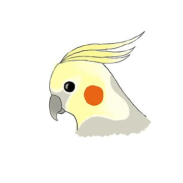 Cockatiel by ryelyb-d