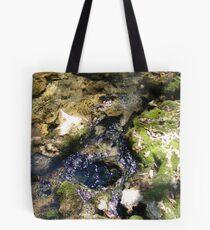 Sylvan Spring Tote Bag
