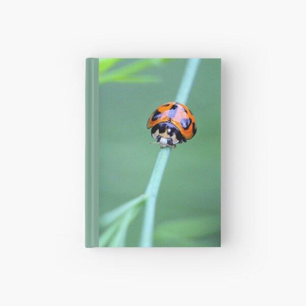 Little Ladybird Beetle Hardcover Journal