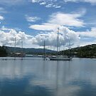 Savu Savu, Fiji by laurynwood