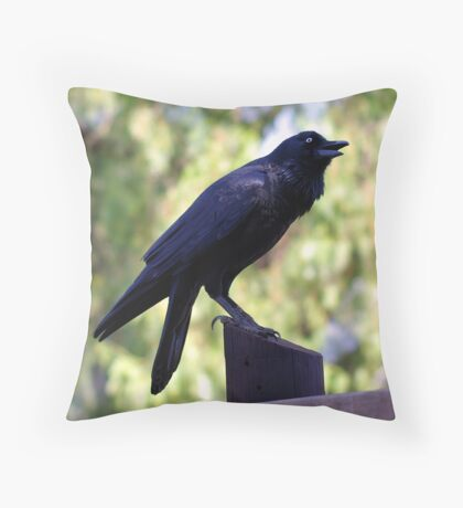 Black Bird, Childrens' Farm, Collingwood, Melbourne Throw Pillow