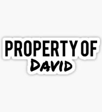 Property of David Sticker