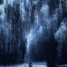 Dancing under the willow by theArtoflOve