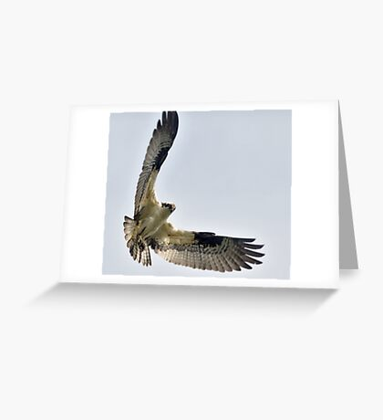 High and Mighty Greeting Card