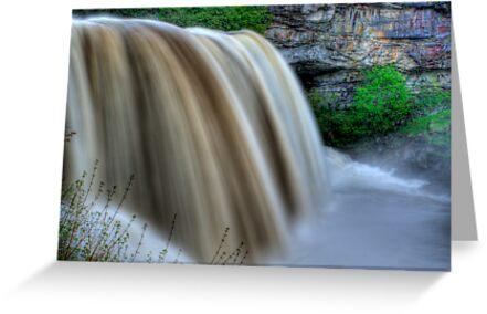 Blackwater Falls by Justin Taylor