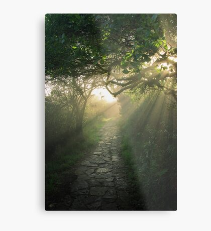 God's Path Metal Print