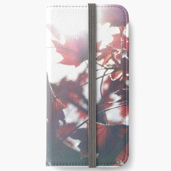 A Dark Autumn iPhone Wallet