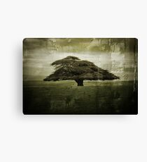 Desolate Tree Canvas Print