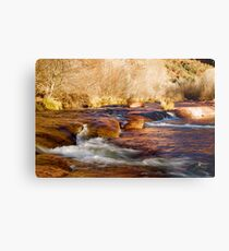 Oak Creek | Sedona, Arizona Metal Print