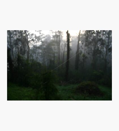Tightrope Photographic Print