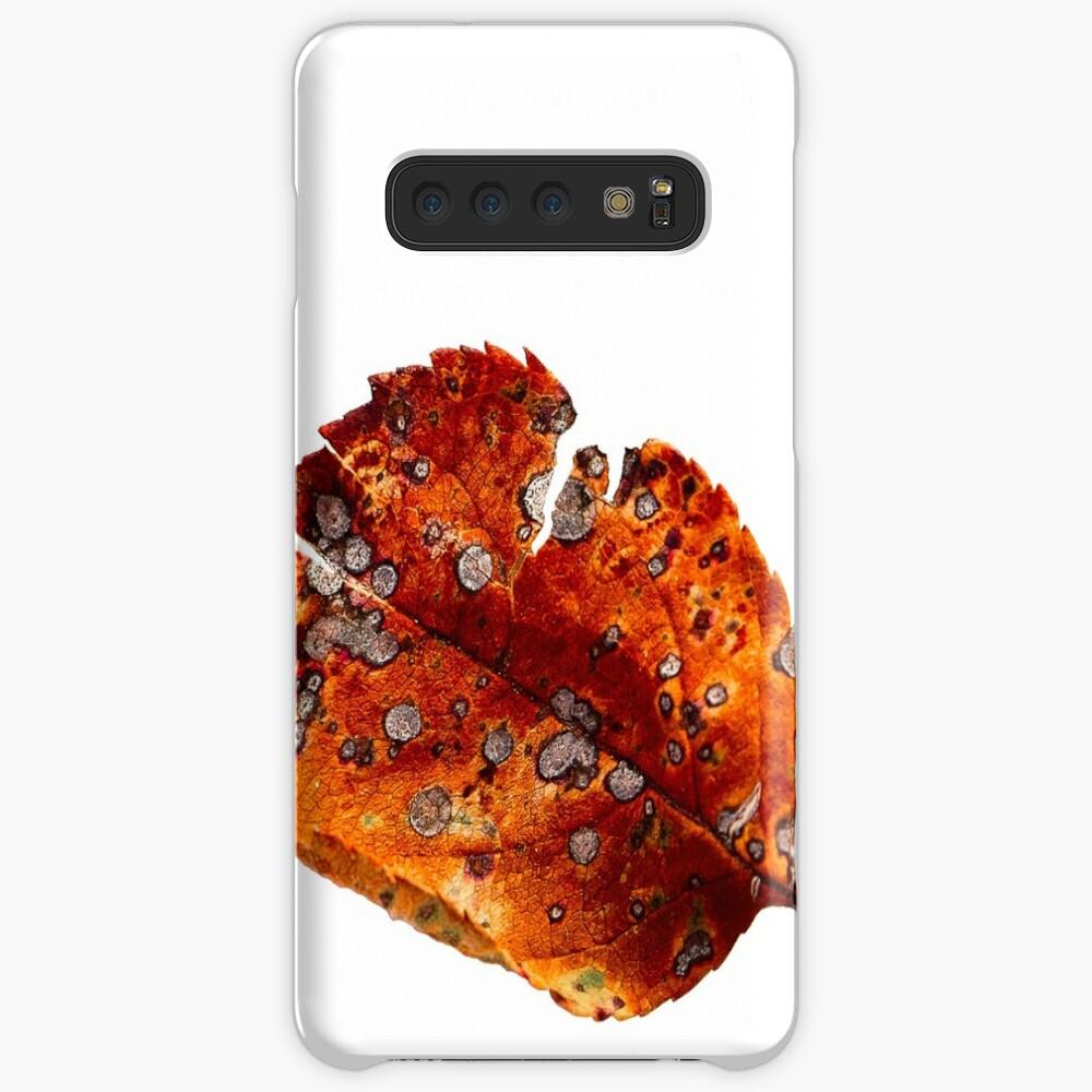 Autumn Leaf 2 Case & Skin for Samsung Galaxy