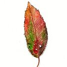 Black Cherry Leaf in Autumn by Cleave