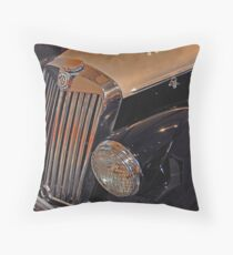Re-Imagined Throw Pillow