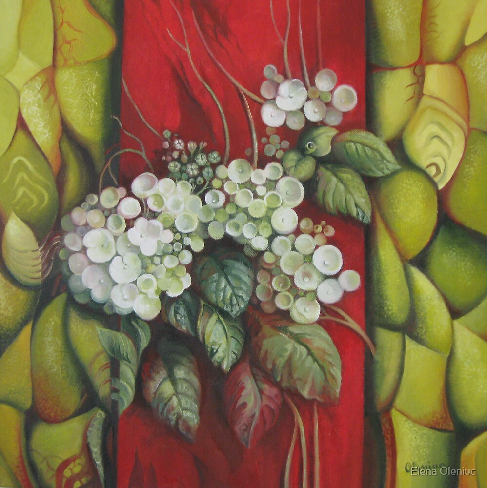 Contrast by Elena Oleniuc