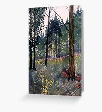"""""""Conifers at Cod Beck"""" Greeting Card"""