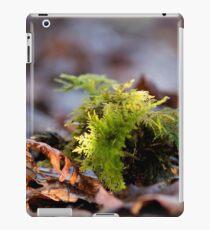 Behan câr iPad Case/Skin