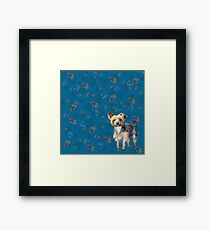 Yorkie on blue Framed Print