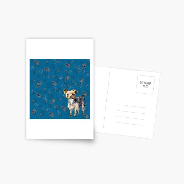 Yorkie on blue Postcard