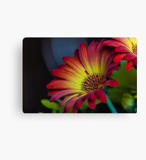 Red Yellow Flower Canvas Print