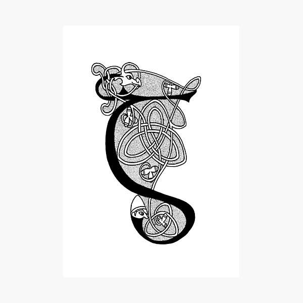 Knight and Dragon Alphabet - G - black and white Photographic Print