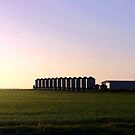 Morning light reflecting off wheat Silos  by cjcphotography