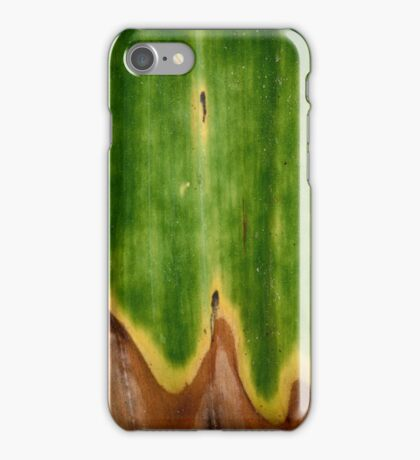 Transition iPhone Case/Skin